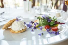 VeilchenFrischkäse an Salat